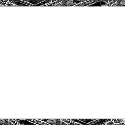 This is derby logo